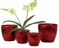 Выбор подходящего горшка и кашпо для орхидей: важные советы