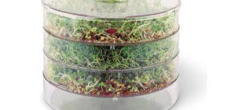 Проращиватели семян: автоматические, гидропонные и самодельные