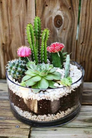 Вермикулит для комнатных растений