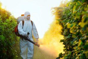 Применение пестицидов и гербицидов