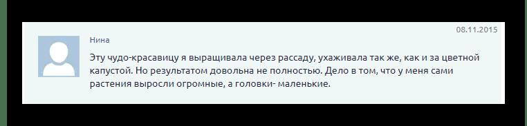 Капуста Романеско отзыв