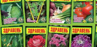 Здравень — полезное удобрение для садовых и комнатных растений