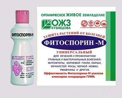 Фитоспорин-М: инструкция по применению и отзывы