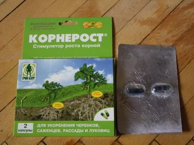 Применение корнероста для растений