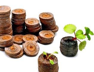 Заменят ли торфяные таблетки обычный грунт для рассады, и как ими пользоваться?