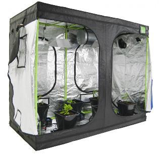 Собираем домашний гроубокс: материалы для оборудования и нюансы эксплуатации