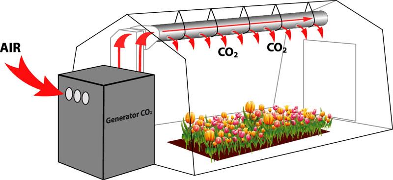 Углекислый газ для растений в теплицах