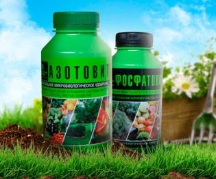 Азотовит и фосфатовит – биоудобрения нового поколения