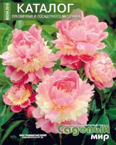Каталог луковичных и посадочного материала садовый мир