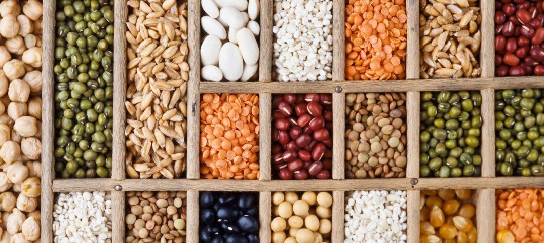 Семена - недорогой посадочный материал