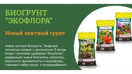 Использование биогрунта Экофлора: преимущества и недостатки