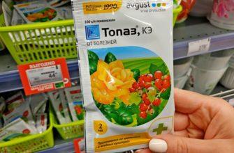 Против мучнистой росы — препарат Топаз КЭ от болезней для растений: инструкция по применению, цена, отзывы