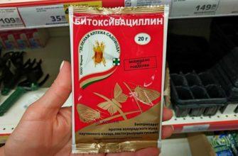 Как применять Битоксибациллин в саду от муравьев: инструкция по применению для растений, отзывы